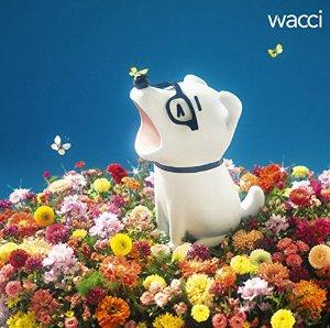 wacci